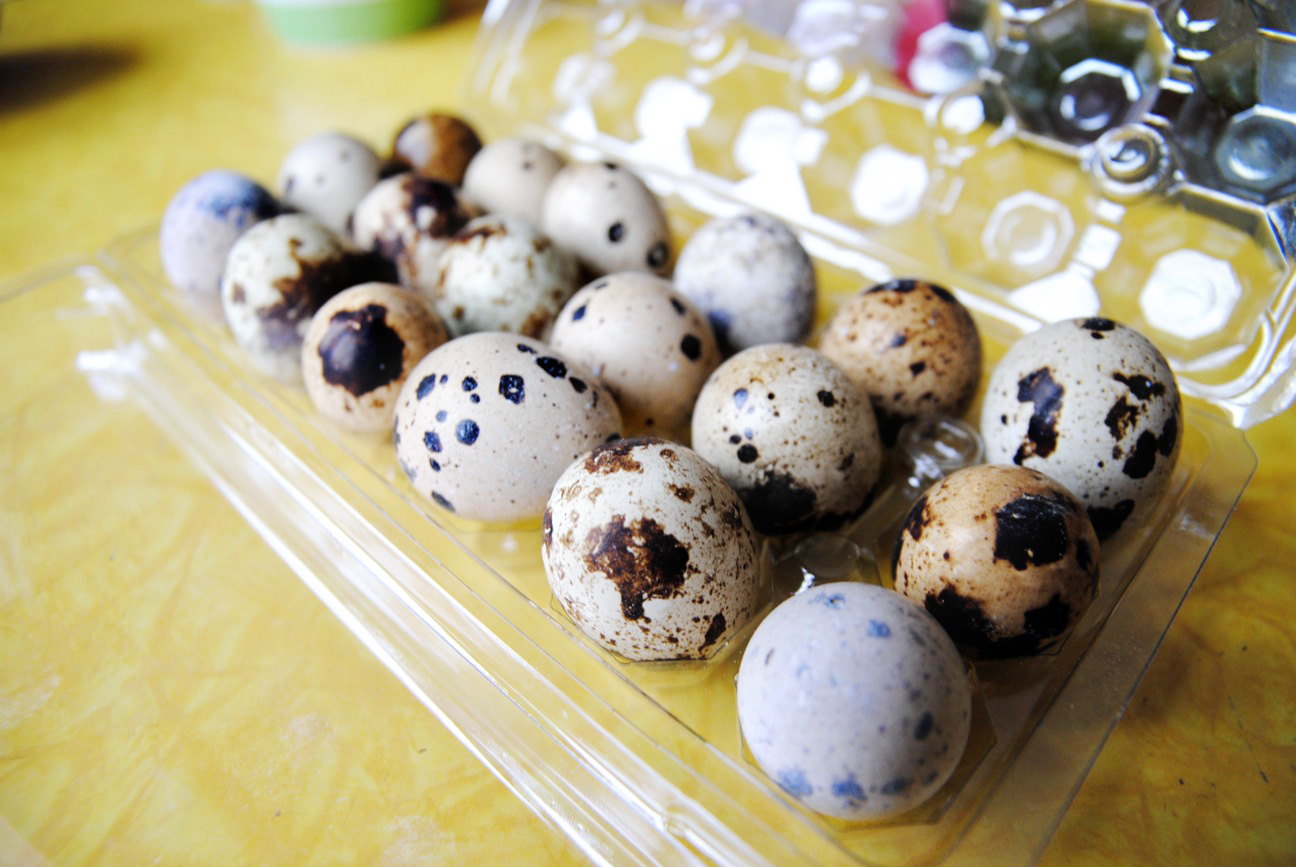 301 moved permanently for Quail egg canape