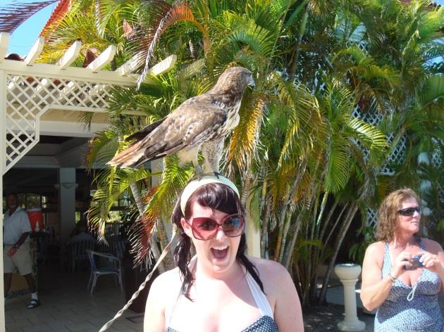 Falcon attack