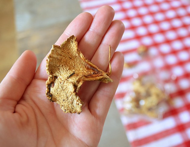 Dried chantrelle