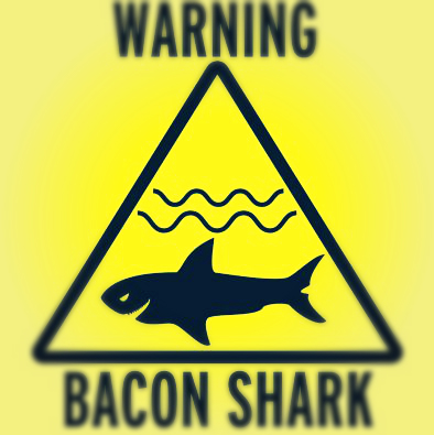 bacon shark