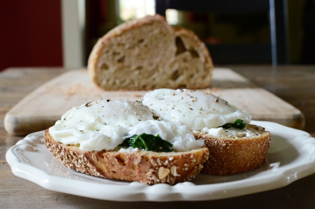 Poached eggs with ramps on rye